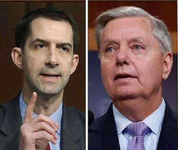 حمایت دو سناتور جمهوریخواه آمریکا از حمله به مواضع حشد الشعبی