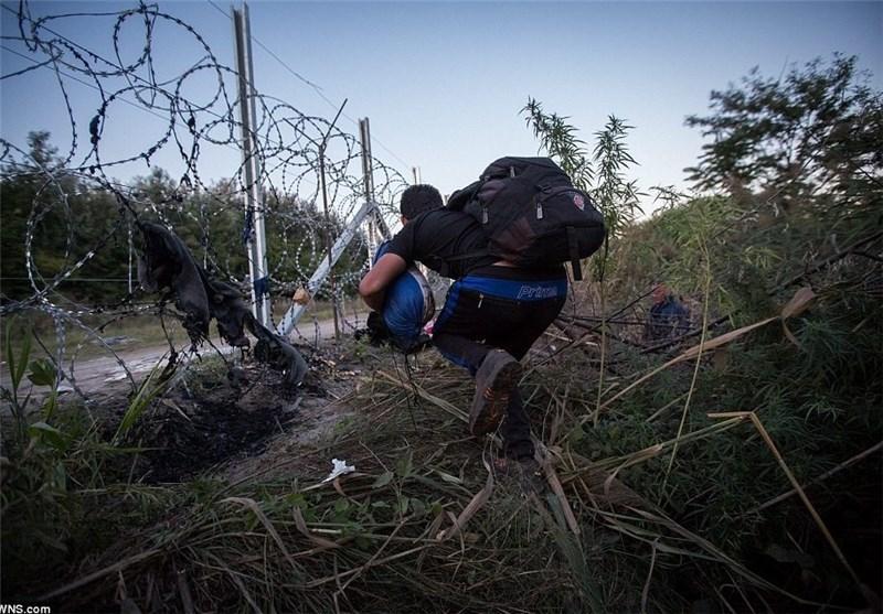 چرا آلمانِ سرسخت در برابر یونان می کوشد منجی بحران پناه جویان سوری لقب بگیرد؟