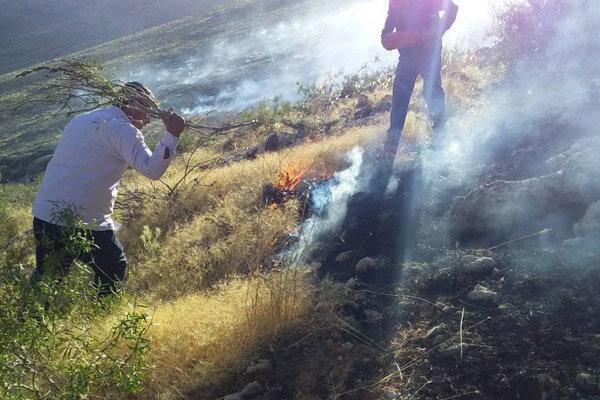 اغلب آتش سوزی های فارس به علت سهل انگاری در مرتع داری رخ می دهد