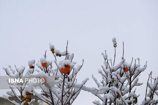 کاهش 5 تا 10 درجه ای دمای گیلان، در ارتفاعات برف می بارد