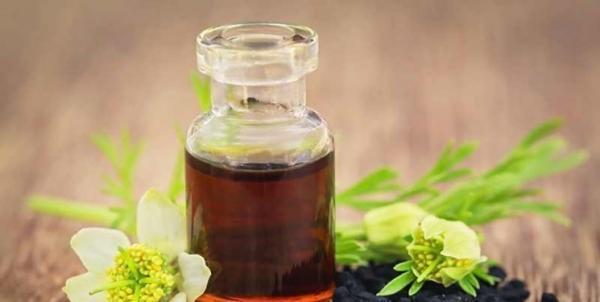 فراوری پماد درمان سوختگی با استفاده از طب سنتی توسط شرکتی دانش بنیان